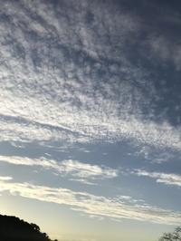 蘆の花、鰯雲 - 円座抄