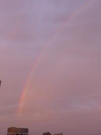 おはようモーニング、朝から虹が! - 新 LANILANIな日々
