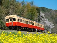 2015 4 2 小湊鐵道 - kudocf4rの鉄道写真とカメラの部屋2nd
