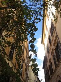 「路地が、好き♪」 ~ コロッセオ周辺 ~ - 『ROMA』ローマ在住 ベンチヴェンガKasumiROMAの「ふぉとぶろぐ♪ 」