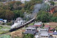 木の葉がかすかに色づき始め煙が白くなる季節- 2019年秋・秩父鉄道 - - ねこの撮った汽車