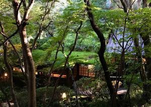 秋川渓谷- 黒茶屋 - - 移動祝祭日 (a moveable feast)