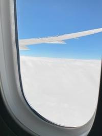 そらみ、飛行機に乗る(^^♪ - ハッピーショコラ ぷらす にゃんこ