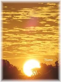 朝散歩10/7おひさま - おだやかに たのしく Que Sera Sera