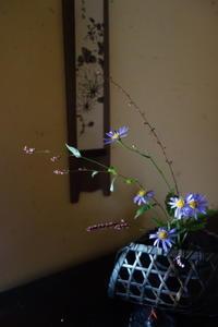 秋草の楽しい季節 - g's style day by day ー京都嵐山から、季節を楽しむ日々をお届けしますー