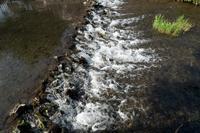 湧き水のまち東久留米(4) - M8とR-D1写真日記