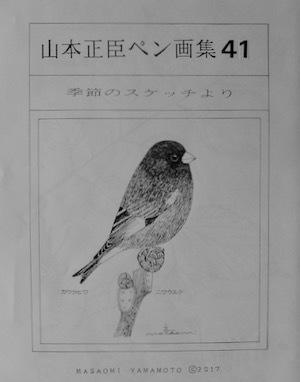 #自然画 『ペン画集』 41 -