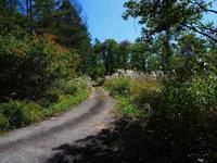 秋の高原 - 飛騨山脈の自然