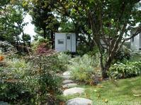 秋の庭しごと庭に咲いた宿根草の花 - シンプルで心地いい暮らし