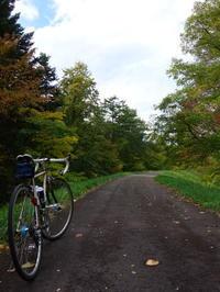 秋です!寒くてたまらんのでシーズン最後のサイクリングとします。多分・・・ - AL6061