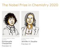 祝!2020年のノーベル化学賞は2名の女性科学者へ - 大隅典子の仙台通信