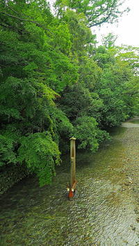 伊勢神宮五十鈴川の清き流れ - 風の香に誘われて 風景のふぉと缶