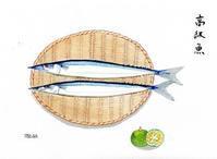 高級魚 - がちゃぴん秀子の日記