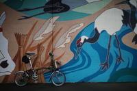 江戸川サイクリングロードへ行こう その7 - 「趣味はウォーキングでは無い」
