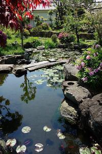 春から夏へ本照寺庭園 - レトロな建物を訪ねて