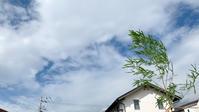香南市M様邸★地鎮祭【高知市FUN HOUSE】 - ファンハウスアンドデザイン │ 高知県のオーダーメードの新築・リノベーション