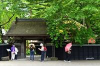 角館 武家屋敷の門(青柳家) - ぎゃらりー竹斎堂