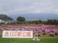 2019.10月花の都公園へ♪ - さくらひめほっこり日和
