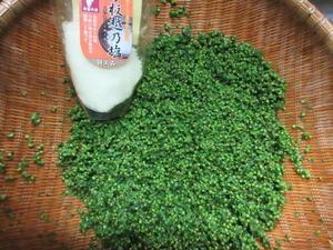 紫蘇の実・葉唐辛子・ソーキ煮・雑魚と大根おろし - おしゃべりきものⅡ-または、おしゃべりねこ