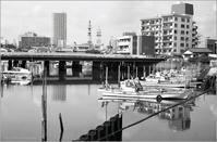 江戸前漁港 - 心のカメラ   more tomorrow than today ...