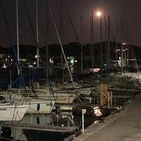 月夜 - 四代目志賀社長のブログ