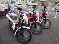 三宅島のお客様に - バイクの横輪