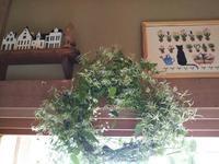 仙人草は綿毛に、。サンタさん出来上がり(^▽^) - ちゃたろうとゆきまま日記