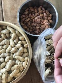 生のピーナッツで作ろう - 六丁目日記