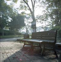 朝のベンチ - またいつか旅に出る