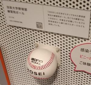 横浜法友会の東京六大学野球観戦中止等 - 鈴の音