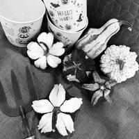 オバケが出るぞ〜〜!! - ブレスガーデン Breath Garden 大阪・泉南のお花屋さんです。バルーンもはじめました。