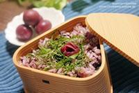 【梅干しレシピ】かりかり小梅とひじきのシンプル雑穀ご飯とカリカリ小梅の薔薇梅の作り方。 - スパイスと薬膳と。