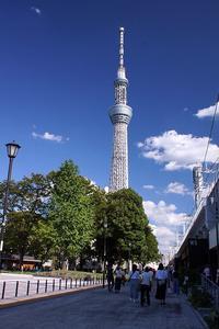 ミズマチと隅田公園☆青空が嬉しい - さんじゃらっと☆blog2