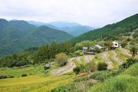 紀伊半島熊野高原神社、高原を散歩 - 旅の備忘録
