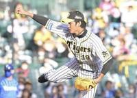 阪神甲子園球場 - あらびき