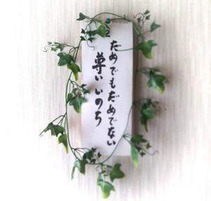 残念賞 - Natural healthy Life