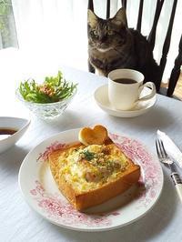 鮭ときのこのパングラタン・・・あさりとのんびりランチ♪ - キッチンで猫と・・・