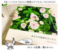 【ちょこっと入荷】写真とことばの本『あなたの物語をはじめる』Maki SAEGUSA - maki+saegusa