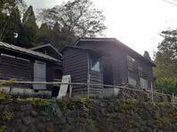 奥医王山(939.1m) 栃尾道~菱池小原 - 骨切りぺんぺん草