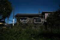 日ノ出町から、沼垂廃線沿いに20201011 - Yoshi-A の写真の楽しみ