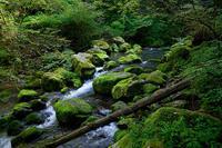 滋賀県遠征・其の二河内の風穴 - デジタルな鍛冶屋の写真歩記