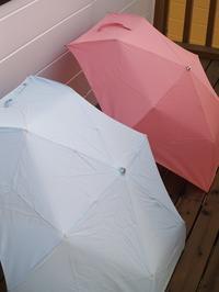 小型台風が舞い戻りました - hibariの巣