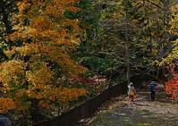 初秋の恵庭渓谷 - お茶にしませんか2