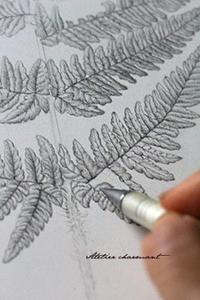 シダを描く - Atelier Charmant のボタニカル・水彩画ライフ