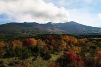 山の上、紅葉も終盤 - へっぽこあるぴにすと☆