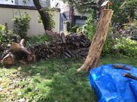 伐採して切り揃えて積んだ木は? - ハンドメイド  Atelier   maki