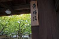 【大徳寺黄梅院】関西帰省 - 5 - - うろ子とカメラ。Ⅱ