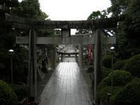YASHICA80's Film を携え宮地嶽神社へ - SWEET SWEET JAMMYS〜カメラとレコーディングと〜