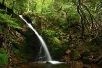 古屋不動滝2 - 大山山麓、山、滝、鉄道風景