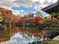 歴史と自然が調和された優美さ、名勝「好古園」 - ライブ インテリジェンス アカデミー(LIA)